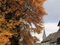 Herbst-03